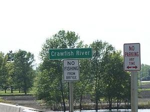 Cangrejos del río
