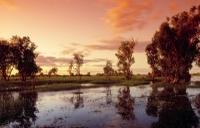 3-Day Kakadu National Park and Arnhem Land Explorer Tour from Darwin Photos