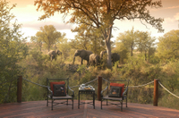 3-Day Kruger National Park Luxury Safari from Johannesburg Photos