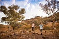 3-Day Small-Group Eco-Tour from Adelaide: Flinders Ranges Photos
