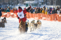 7-Day Winter Alaska Experience: Anchorage and Iditarod Trail Sled Dog Race