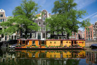 Amsterdam Shore Excursion: Private City Highlights Walking Tour Photos