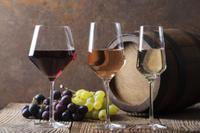 Ancient Akrotiri and Santorini Wineries Tour Photos