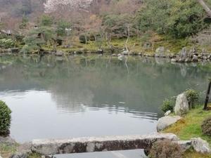 Arashiyama and Sagano Morning Walking Tour Photos