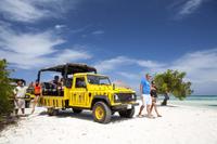 Baby Beach Jeep Adventure