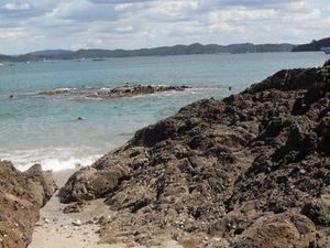 Bay of Islands Day Tour from Auckland Photos