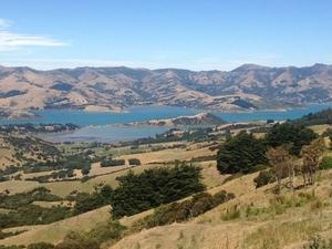 Akaroa Shore Excursion: Banks Peninsula, Christchurch City Tour and Jet Boat on Waimak River Photos