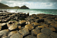 Belfast Shore Excursion: Giant's Causeway and City Sightseeing Tour Photos