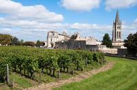 Bordeaux Super Saver: Small-Group Wine Tasting and Lunch plus St-Emilion Wine Tour Photos
