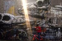 Brooklyn Urban Art Bike Tour Photos