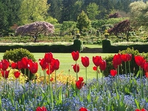 Vancouver Shore Excursion: Victoria and Butchart Gardens from Vancouver Photos