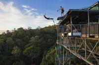 Cairns Bungy Jump and Minjin Swing Photos