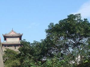 Xi'an Small-Group Tour: Terracotta Warriors and Ancient City Wall Bike Tour Photos