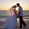 Civil Wedding Ceremony on a Miami Beach