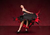 Cordoba Flamenco Show at Tablao el Cardenal Photos