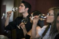 Custom Private Tour: Mornington Peninsula Winery Tour Photos