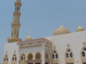 Private Tour: UAE East Coast Day Trip from Dubai Photos