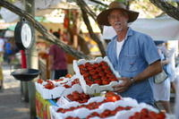 Eumundi Markets Round-Trip Shuttle Photos