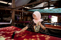 Experience Penang: Learn How to Make Malaysian Handicrafts Photos