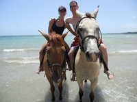 Fort James and Beach Horseback Ride from St John's Photos
