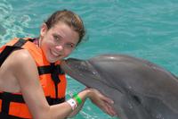 Grand Cayman Dolphin Encounter Photos