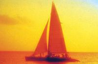 Grand Cayman Sunset Catamaran Sail Photos