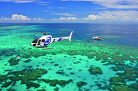 Great Barrier Reef Scenic Helicopter Tour and Cruise from Port Douglas Photos