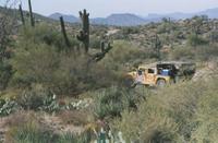 Hummer Night Tour in the Sonoran Desert Photos