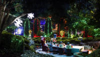 Hunter Valley Gardens Christmas Lights Spectacular from Sydney Photos