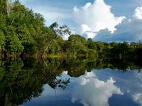 Iquitos Round-Trip Transfer: Cruise Port to Iquitos Hotels Photos