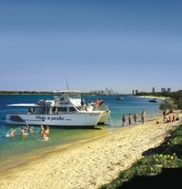 Island Swim and Snorkel Cruise from the Gold Coast Photos
