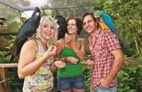 Kuranda Koala Gardens and Birdworld Admission Tickets Photos