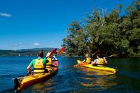 Lake Rotoiti Hot Pools and Glowworm Cave Kayak Tour from Rotorua Photos