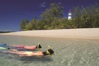Low Isles Great Barrier Reef Sailing Cruise from Palm Cove Photos