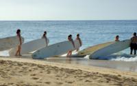 Maui Surf School Surfing Lessons Photos