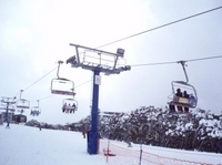 Mt Buller Day Trip with Ski or Snowboard Lesson or Unlimited Lift Pass Photos