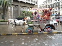 Mumbai by Night: Heritage Tonga Ride to Gateway of India with Dinner Photos