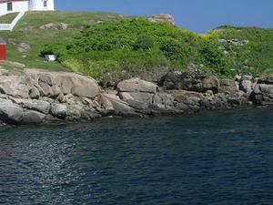 New England Coastal Tour from Boston Photos