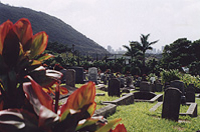 Orbs of Oahu Ghost Night Tour Photos