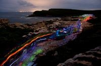 Overnight Royal National Park Tour with Moonlight Walk and Night Photography Lesson
