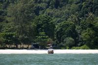 Penang National Park Half-Day Trek Photos