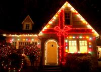 Portland Christmas Lights Sightseeing Tour Photos