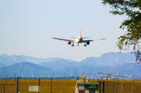 Private Arrival Transfer: Kathmandu International Airport to Hotel Photos