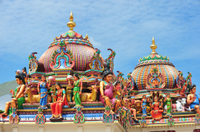 Private Tour: Half-Day Chennai Sightseeing with Government Museum and Kapaleeshwar Temple Photos