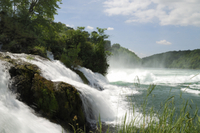 Private Tour: Rhine Falls Tour from Zurich Photos