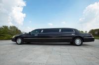Private VIP Limousine Tour of Los Angeles