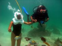 Punta Cana Seaquarium Underwater Adventure Photos