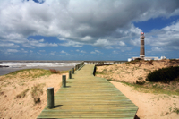 Punta del Este Shore Excursion: Private Sightseeing Tour of Punta del Este Photos