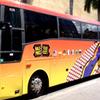 Sawgrass Mills Mall Round-Trip Transport from Miami