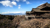 Scholar-led Kyoto Walking Tour: Shintoism and Buddhism in Japan Photos